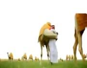 """عن """"الأم"""" و""""الإبل"""" و""""العمل"""".. عمير القحطاني يروي قصة كفاحه الطويلة #عمير_القحطاني_من_الصفر"""